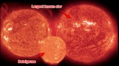 Largest Known Star