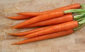 THIS IS A CARROT
