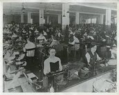 Working Conditions--Labor