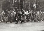 Stutthof Death March