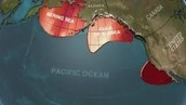 What are some facts about the pacific blob?