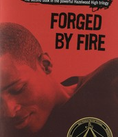 Forged By Fire novel