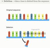 Deletions (mutations)