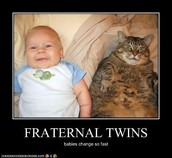 Fraternal Twins