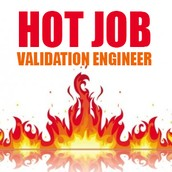 3rd Choice: Validation Engineer