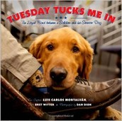 Tuesday Tucks Me In by Luis Carlos Montalvan
