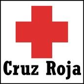 ONGS a las que pertenece la Republica Dominicana
