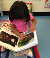 Pop up books are a first grade favorite.  Mia loves interacting with these fun books.