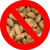 Avoid beans, peas, nuts, and seeds