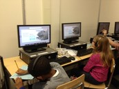 1st and 2nd grade used a capstone ebook to build background knowledge about elephant seals!