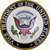 Responsibilities of the Vice President