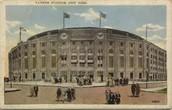 The Yankee's Stadium
