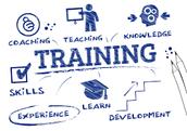 Training for Designated Teachers