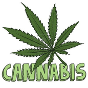 9. What classification does Marijuana belong in?
