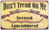 Guns protect us!