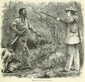 Nat Turner found and executed