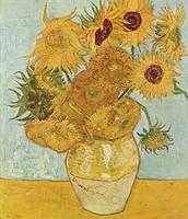 de 14 zonnebloemen