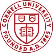 2) Cornell University