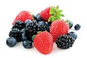 Picked berries