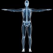 Description of X-rays: