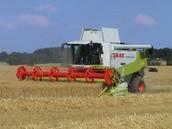 Commerciële landbouw