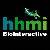 HHMI: Biointeractive Workshop
