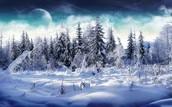 Ojibwe Activity's in Winter