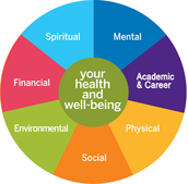 Health and wellbeing related factors which influence ageing