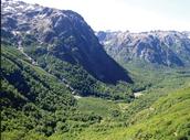 Argentina biome