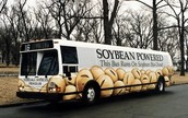 This is a bus that is powered by soybean bio-diesel