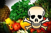 Foods could be harmful and you wouldn't know until its too late.