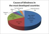 What Cause Blindness...