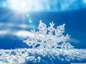 SNOW UPDATES: