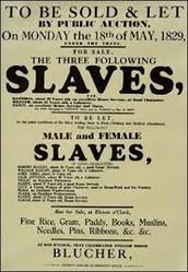 Black History Primary Documents