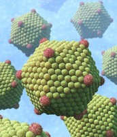 Icosahedral viruses