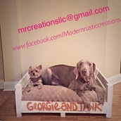 Dog Crate (insert not included)