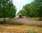 Agro-Forestry Workshop in Paris