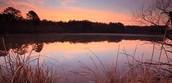 Catawba at sunset