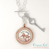 About Origami Owl
