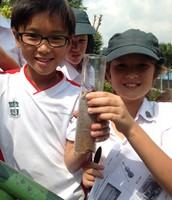 Investigating soil profiles