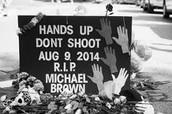 A Memorial in Memory of Michael Brown