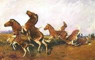 Herd of quagga