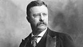 What political party was Theodore Roosevelt apart of when he ran for president