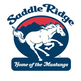 Saddle Ridge Tech profile pic