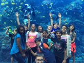 Tropical Reefs and Silly Faces