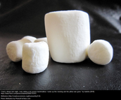 Catch the Marshmallow