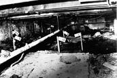 Gacy's Basement