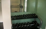 Free-Weights!