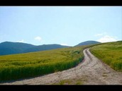 שיר העמק