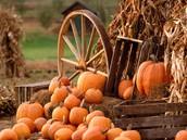 Providence Harvest Festival